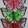 供应蝴蝶 玻璃丝袜 明星装扮 蝴蝶发夹发卡